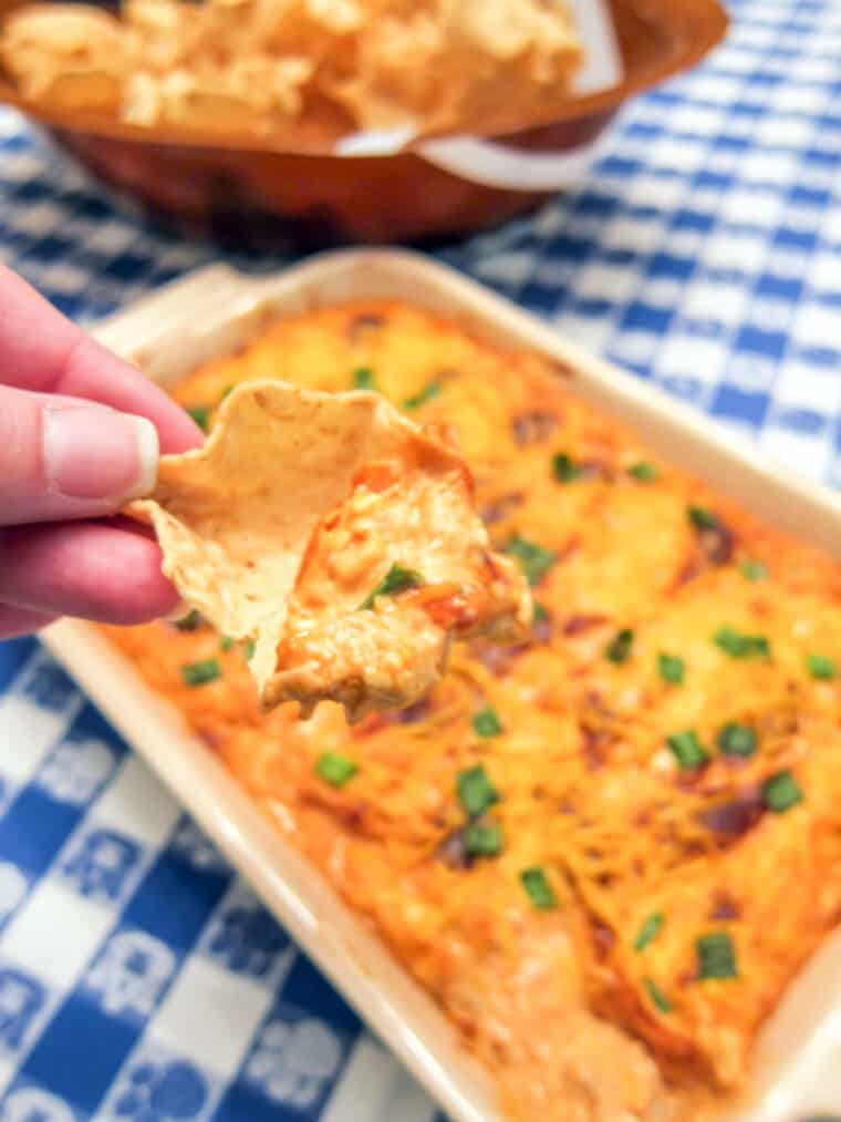 tortilla chip full of bbq chicken dip