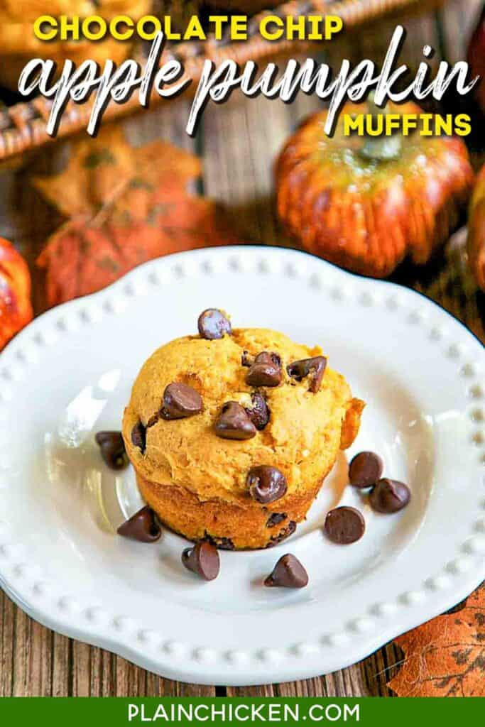 chocolate chip muffin on a plate