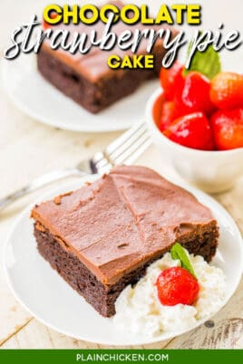 slice of chocolate cake on a plate with text overlay