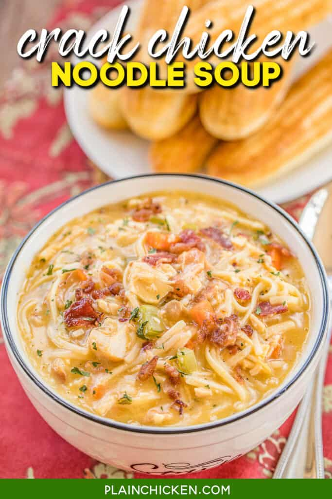 bowl of chicken noodle soup with cheese and bacon