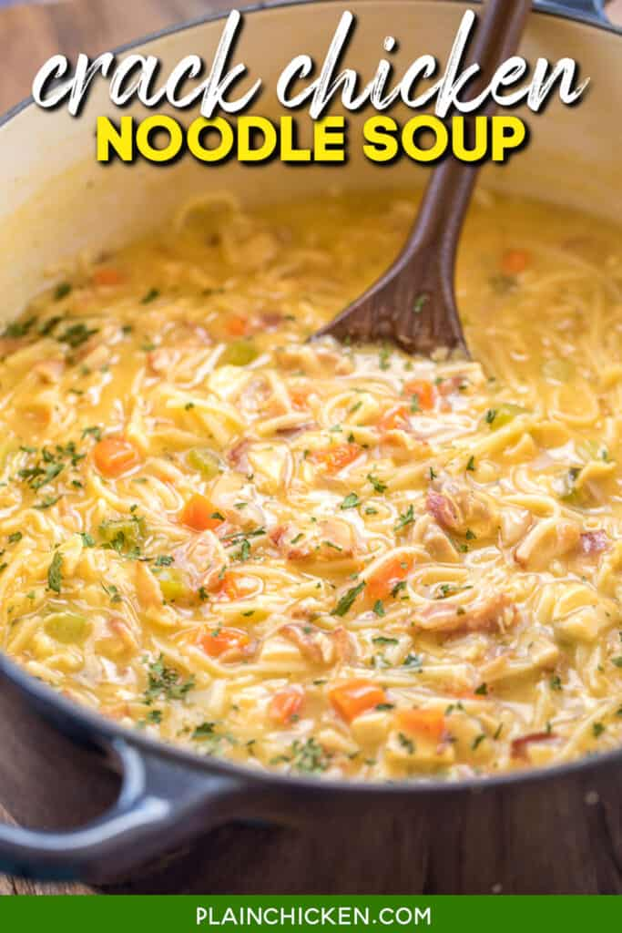 pot of chicken noodle soup with cheese and bacon