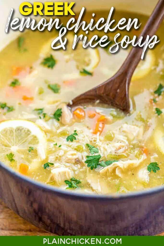 pot of lemon chicken & rice soup