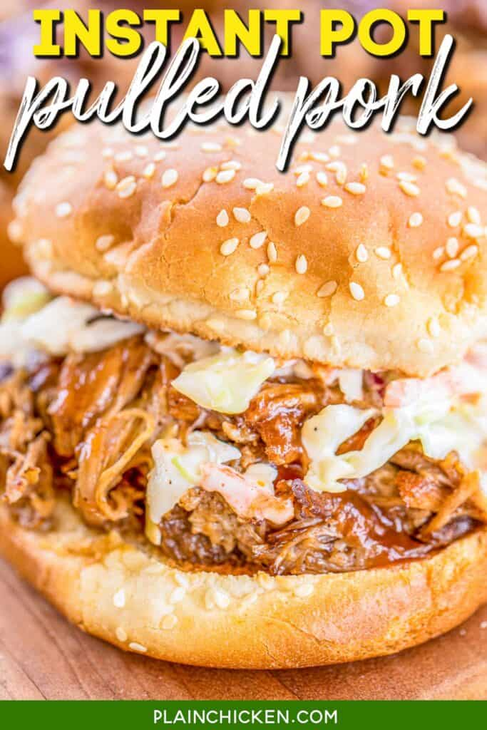 pulled pork sandwich topped with slaw