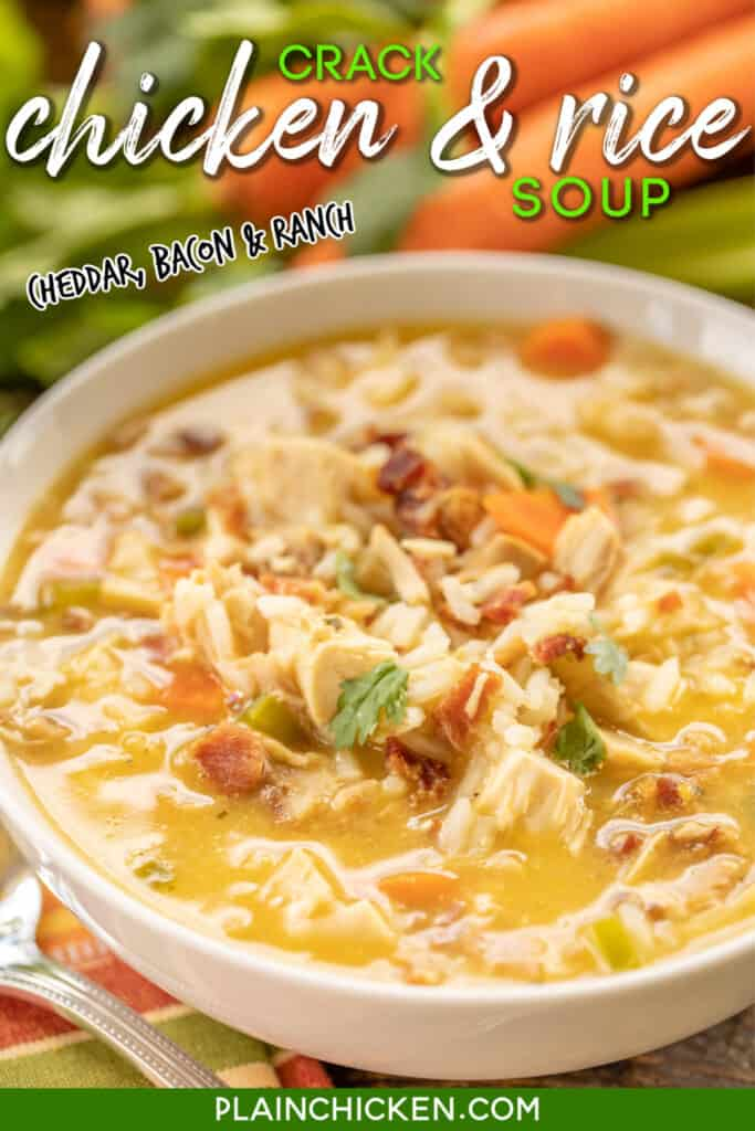 bowl of chicken & rice soup