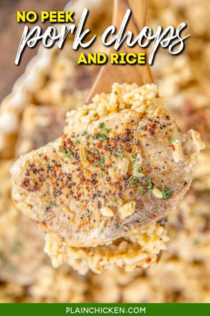 spatula of pork chops and rice