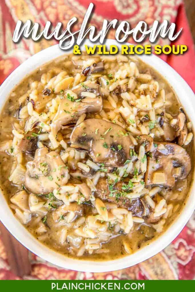 bowl of mushroom & rice soup