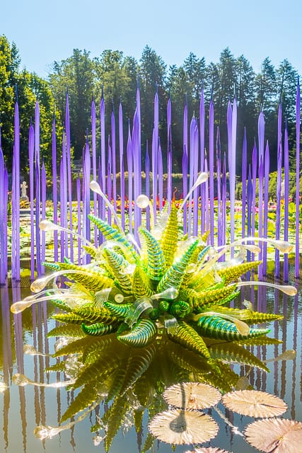Chihuly at The Biltmore - Neodymium Reeds with Fiori Verdi, 2014