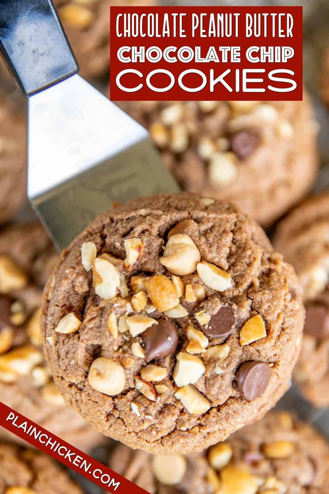 chocolate cookies on a spatula