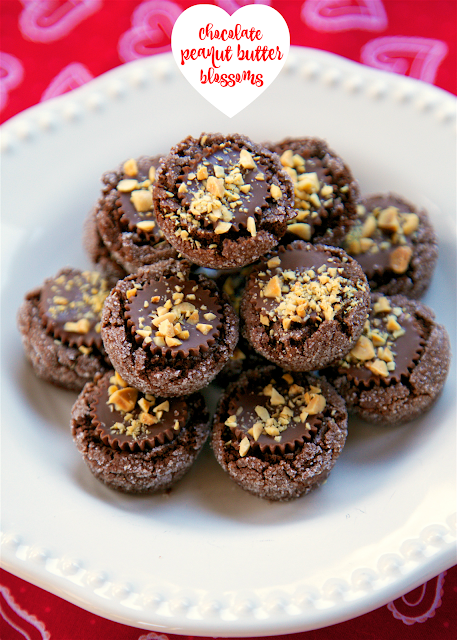 Chocolate Peanut Butter Blossoms - peanut butter chocolate cookies topped with a Reese's cup and chopped peanuts. OMG! Heaven! I have zero self-control around these cookies! Makes 5 dozen - great for sharing.