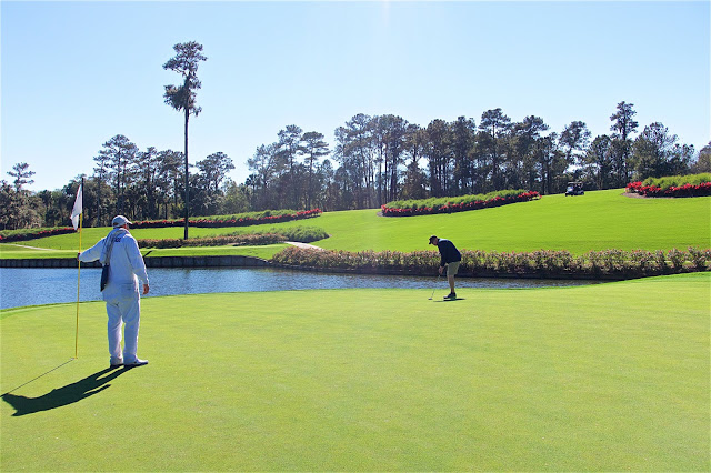 Putting on the 17th green at TPC Sawgrass in Ponte Vedra, FL