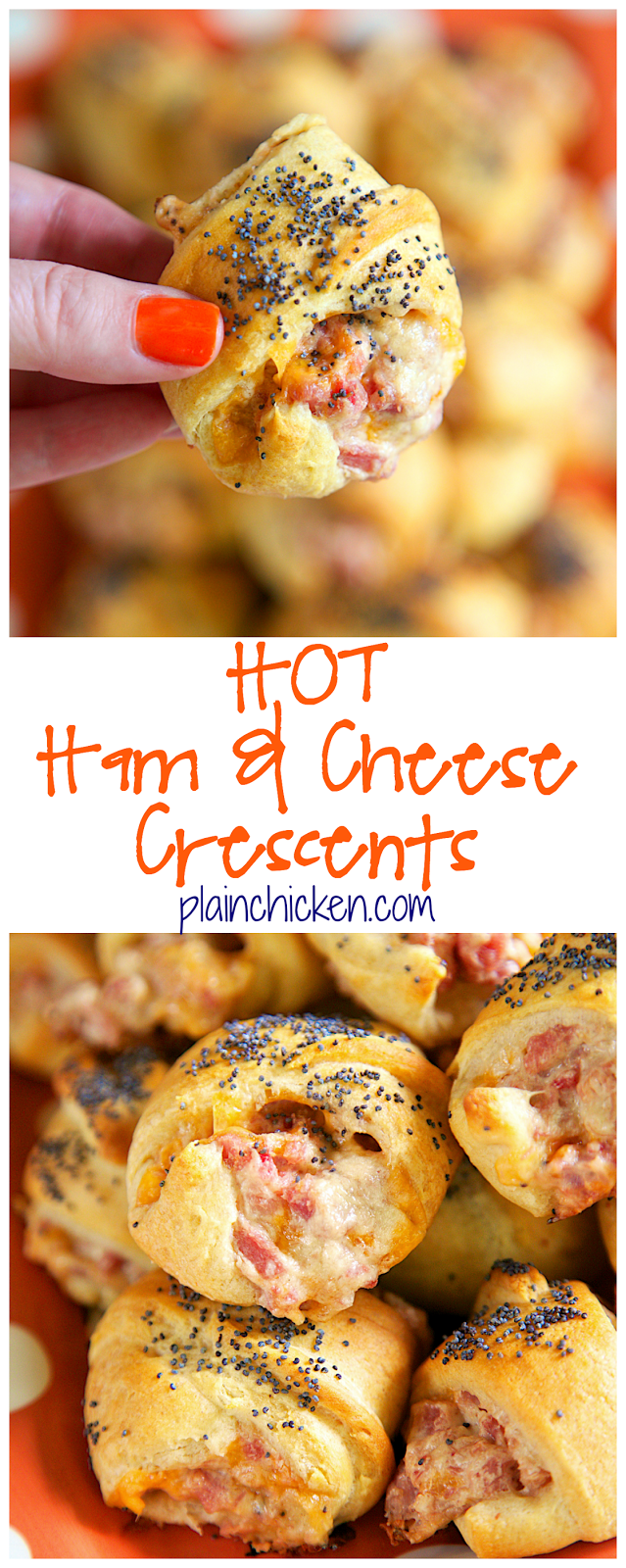Hot Ham and Cheese Crescents recipe - ham, cheddar, swiss, cream cheese, dijon mustard, Worcestershire, brown sugar mixed together and baked in crescent rolls and topped with poppy seeds. I am totally addicted to these! I could not stop eating them! I am already planning on making them again this week!