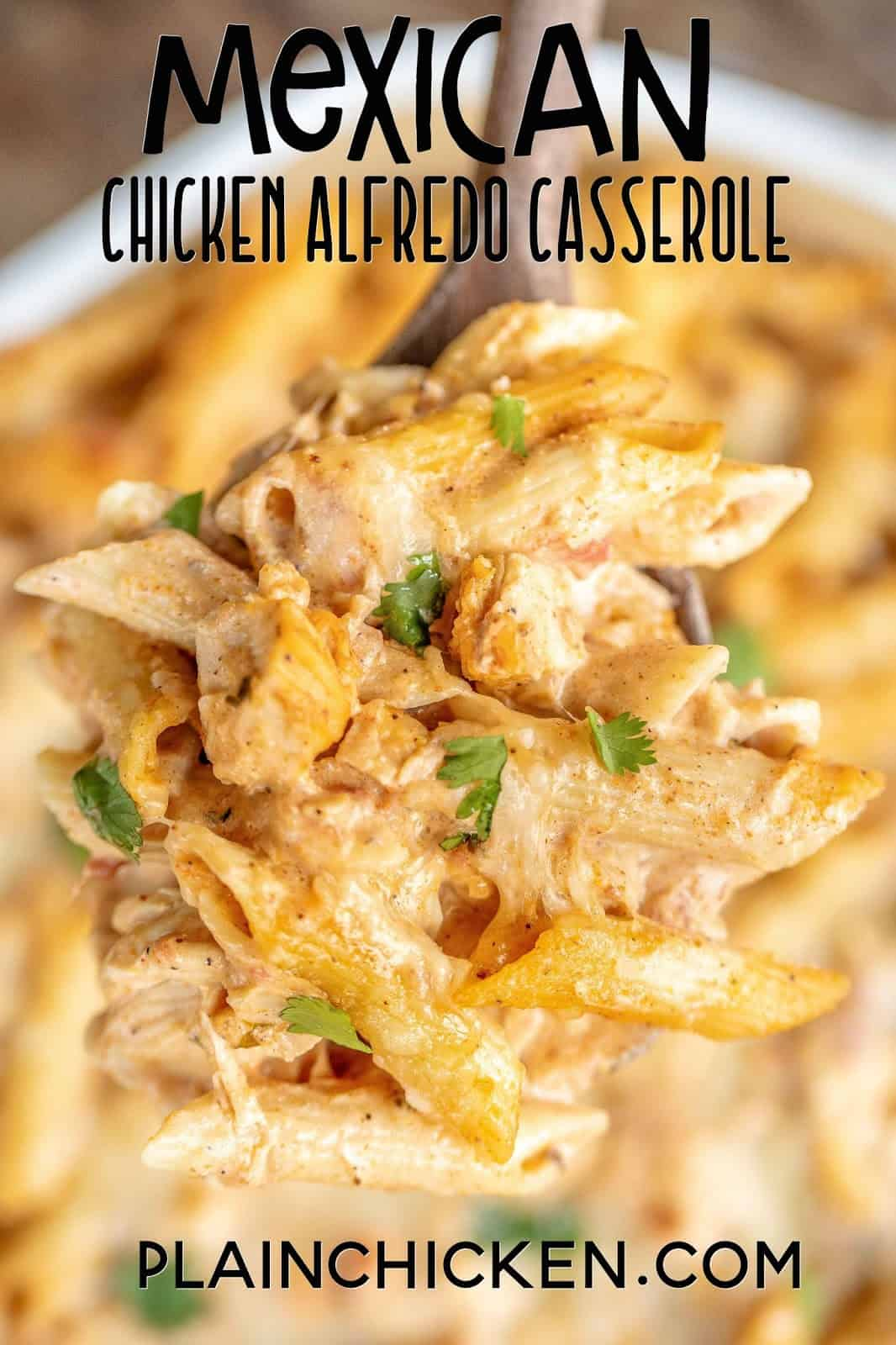 spoonful of chicken pasta casserole