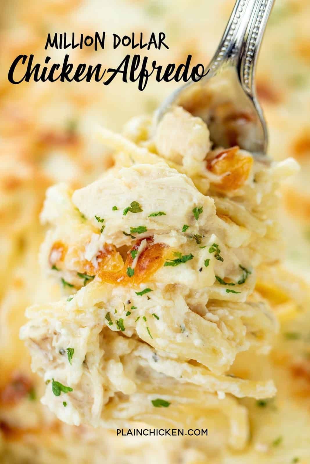 Million Dollar Chicken Alfredo - seriously delicious! Chicken, pasta, alfredo sauce and 4 cheeses! The BEST chicken alfredo EVER!!! Can make ahead and refrigerate or freeze for later. Spaghetti, cream cheese, sour cream, cottage cheese, chicken, Alfredo sauce, parmesan cheese and mozzarella cheese. Serve with a simple salad and garlic bread. Great for dinner parties and potlucks! Everyone loves this easy casserole! I never have any leftovers!! #casserole #chickencasserole #pasta #freezermeal