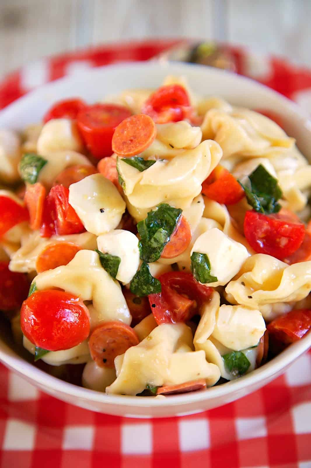 Tortellini and Pepperoni Pasta Salad Recipe - I am not a fan of mayonnaise, so I am always looking for non-mayonnaise pasta salad recipes. A friend sent me this recipe and it sounded right up my alley. It has cheese tortellini, pepperoni, basil, fresh mozzarella, tomatoes and caesar dressing. All of my favorites! Can make ahead of time and refrigerate.