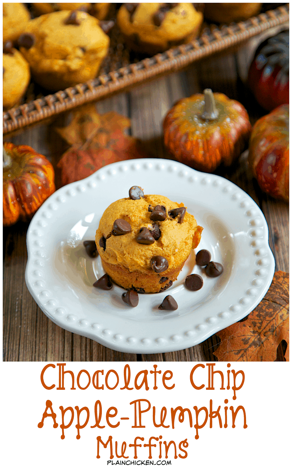 Chocolate Chip Apple-Pumpkin Muffins - SO easy! Only 4 ingredients to these quick and delicious muffins. I like to whip up a batch and eat them for breakfast or as an afternoon snack. YUM!