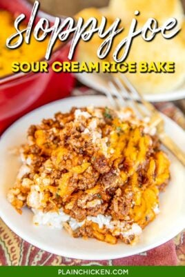 sloppy joe sour cream rice bake on a plate