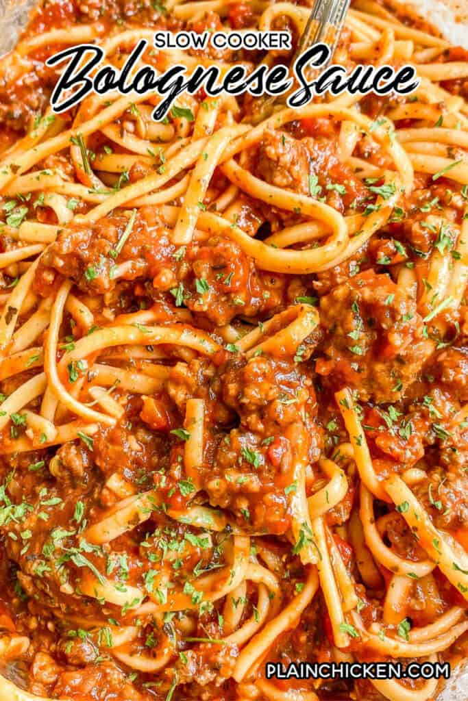 close up of spaghetti and sauce