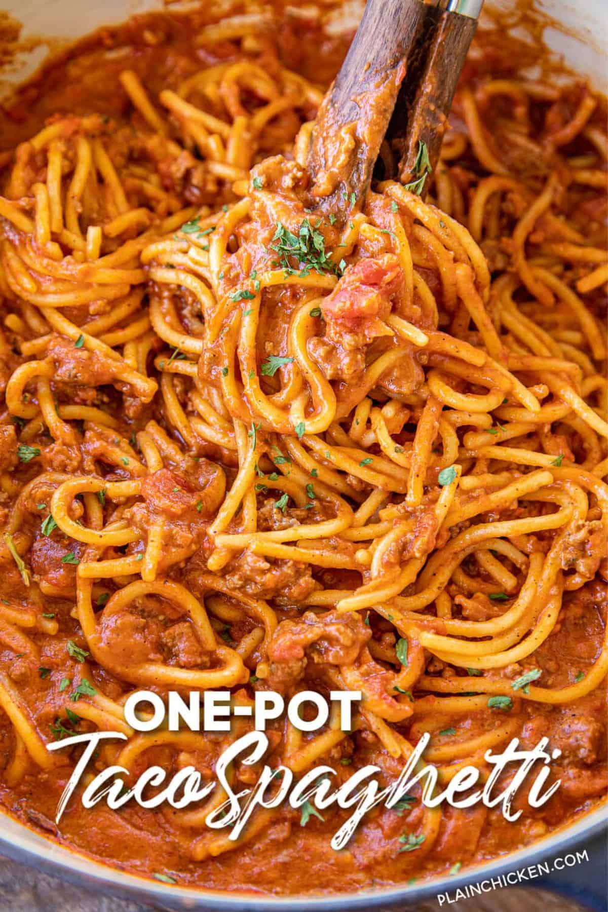 One Pot Taco Spaghetti Plain Chicken