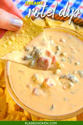 chip with queso dip