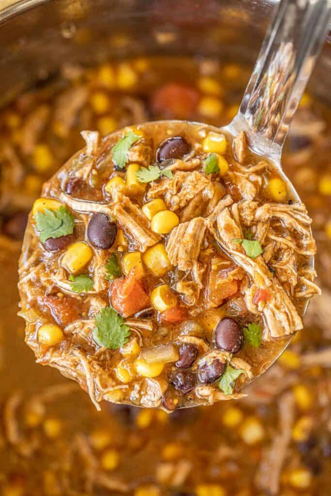 ladle of southwestern pork stew