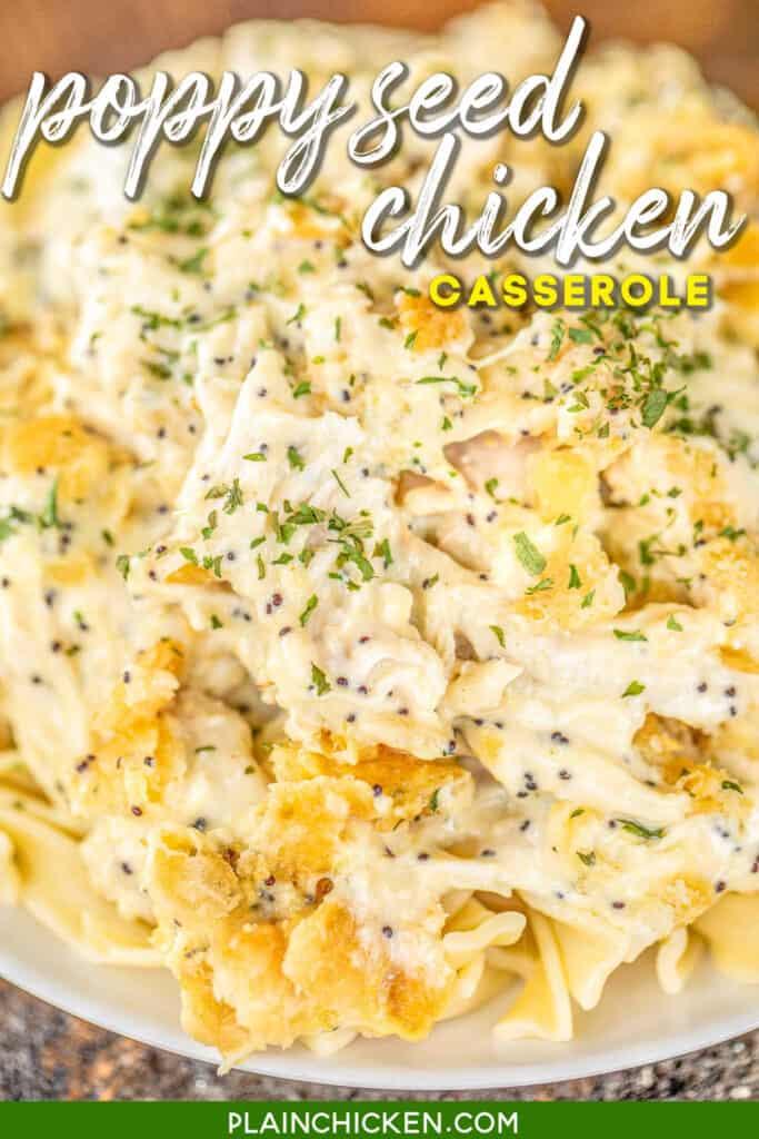 plate of chicken casserole