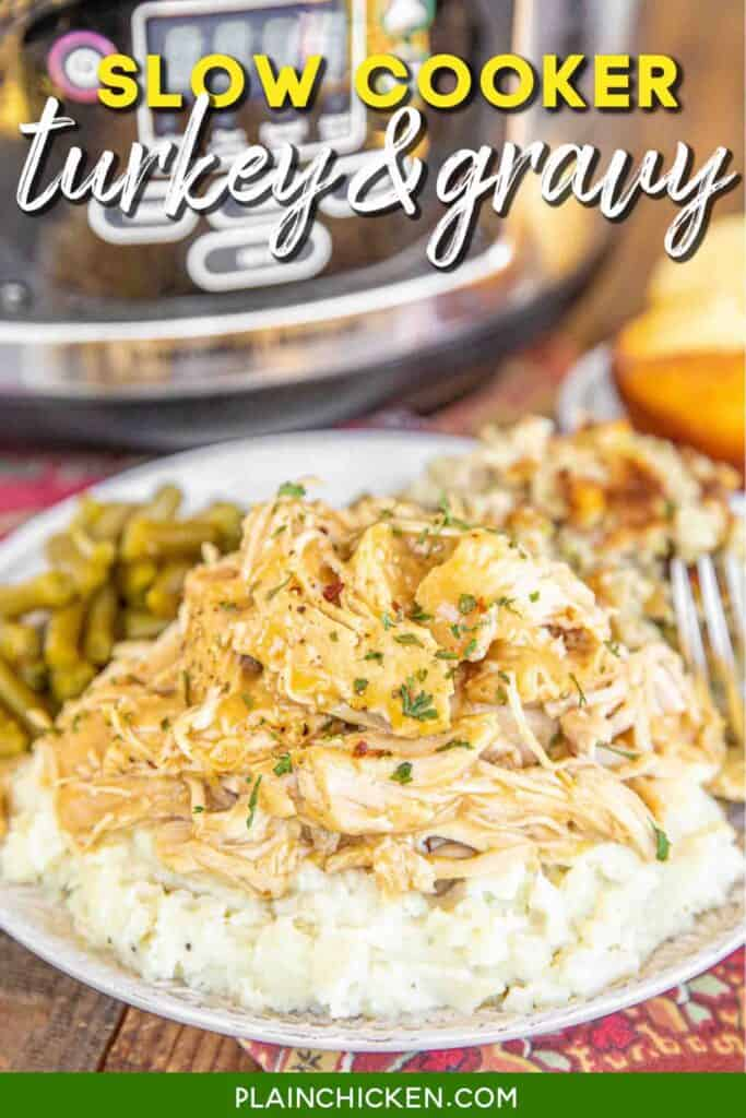 plate of turkey & gravy over mashed potatoes