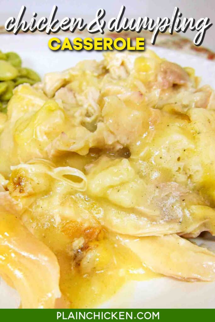 plate of chicken & dumpling casserole