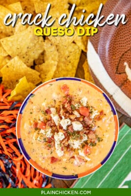bowl of crack chicken bacon queso dip