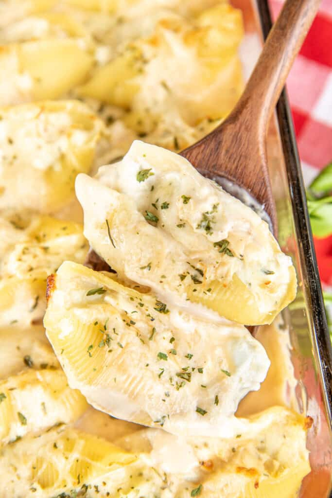 spoonful of chicken alfredo stuffed shells