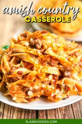 plate of beef noodle casserole
