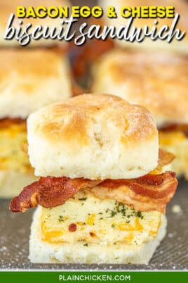 bacon egg & cheese biscuit sandwich